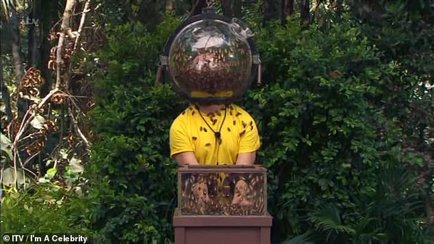 Cruel? I'm A Celebrity has come under fire after contestants crushed dozens of cockroaches during Wednesday's Bushtucker Trial
