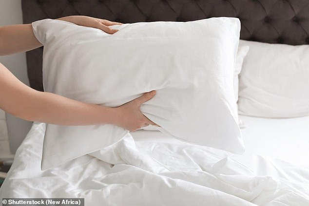 Doctors said cases of 'feather duvet lung' may be missed or wrongly diagnosed because medics don't tend to ask patients about what kind of bedding they sleep with (stock image)