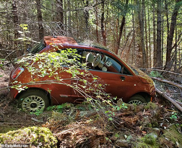 Levin's orange Fiat car (pictured) was found at the top of the ravine and contained the decomposed body of his pet pug, Boo Boo Bear