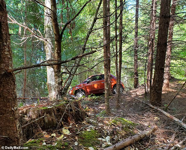 The car's passenger side suffered severe damage with a sheared off wing mirror and extensive dents as it stood nestled in the woods