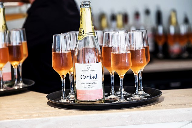 Five wines in the Cariad brand are produced at Llanerch,Wales's largest vineyard