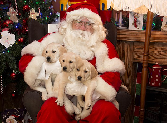 Father Christmas impersonators across the country have been given a list of 'Santa clauses' on how to treat children who visit them during the holiday season. Stock picture