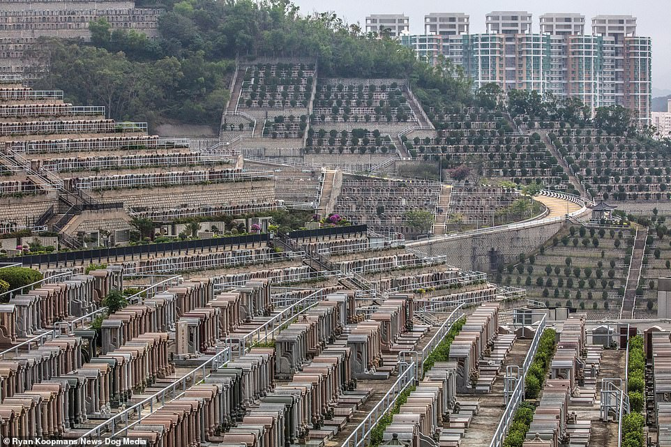 Rows of Roman Pillars, somewhere in China, specific location not known, 2018