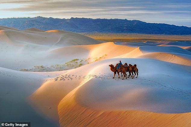 Idyllic isolation: Camel riding in the breathtaking Gobi desert